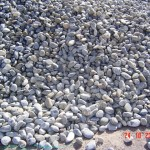 Piedras Varias 001