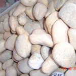 Piedras Varias 021